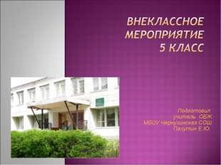 Подготовил учитель ОБЖ МБОУ Чернухинская СОШ Пахутин Е.Ю..