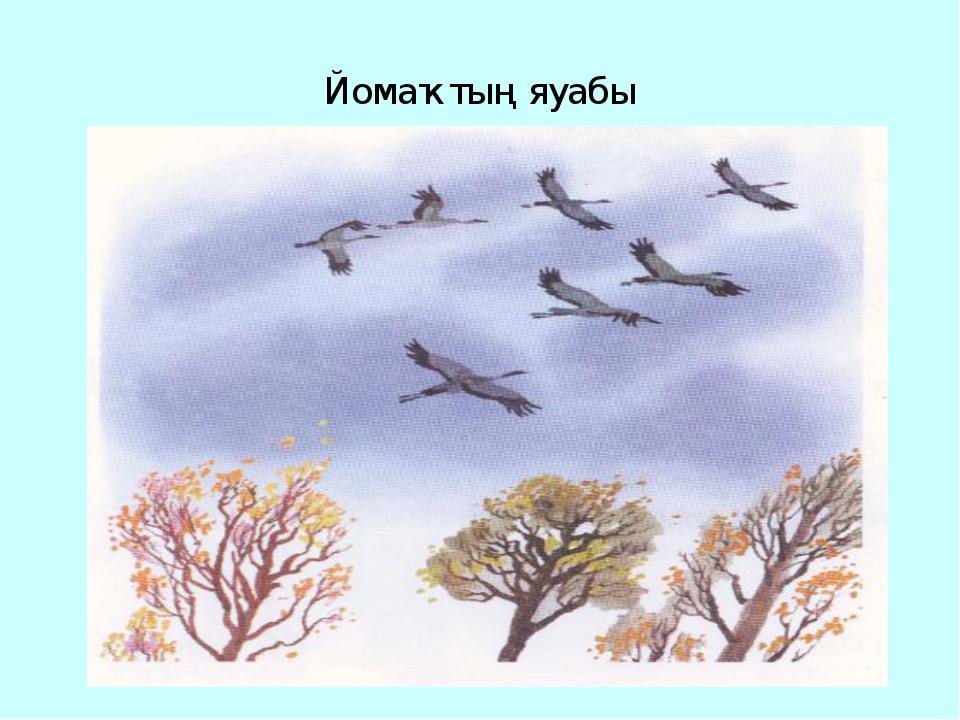 Йомаҡтың яуабы Ҡоштар