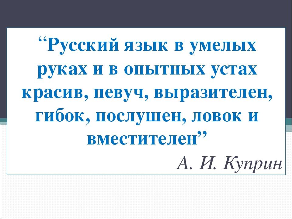 """""""Русский язык в умелых руках и в опытных устах красив, певуч, выразителен, ги..."""