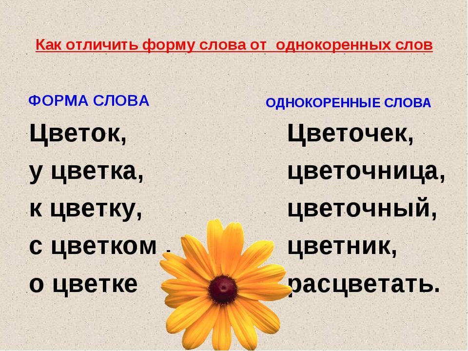 Как отличить форму слова от однокоренных слов ФОРМА СЛОВА Цветок, у цветка, к...