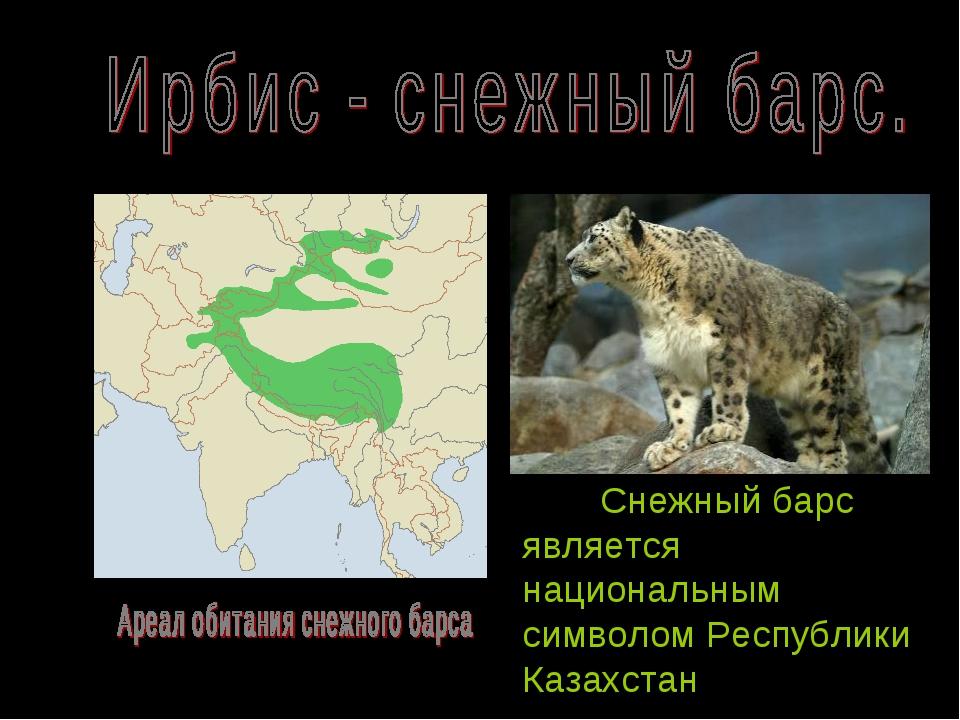 Снежный барс является национальным символом Республики Казахстан