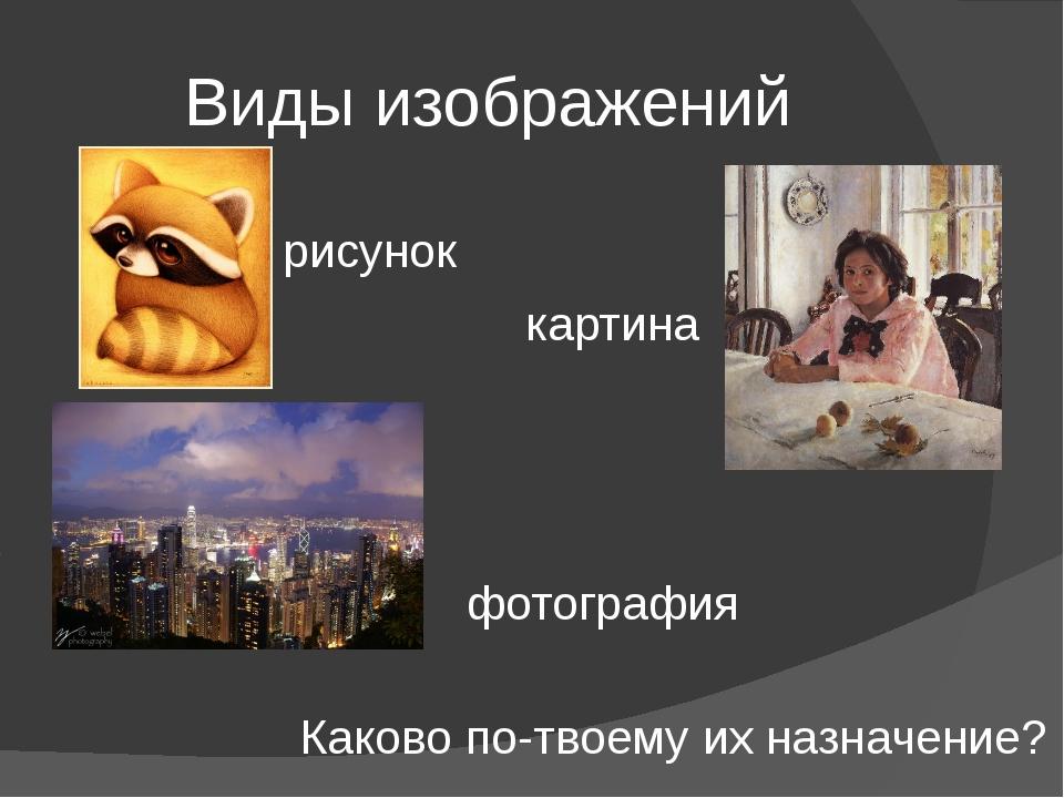 Виды изображений рисунок фотография картина Каково по-твоему их назначение?
