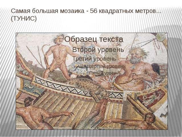 Самая большая мозаика - 56 квадратных метров... (ТУНИС)