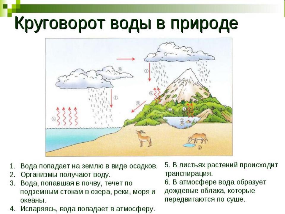 Картинки с круговоротом воды