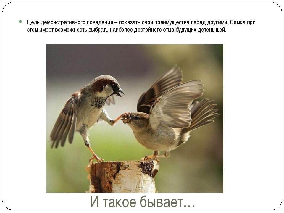 И такое бывает… Цель демонстративного поведения – показать свои преимущества...