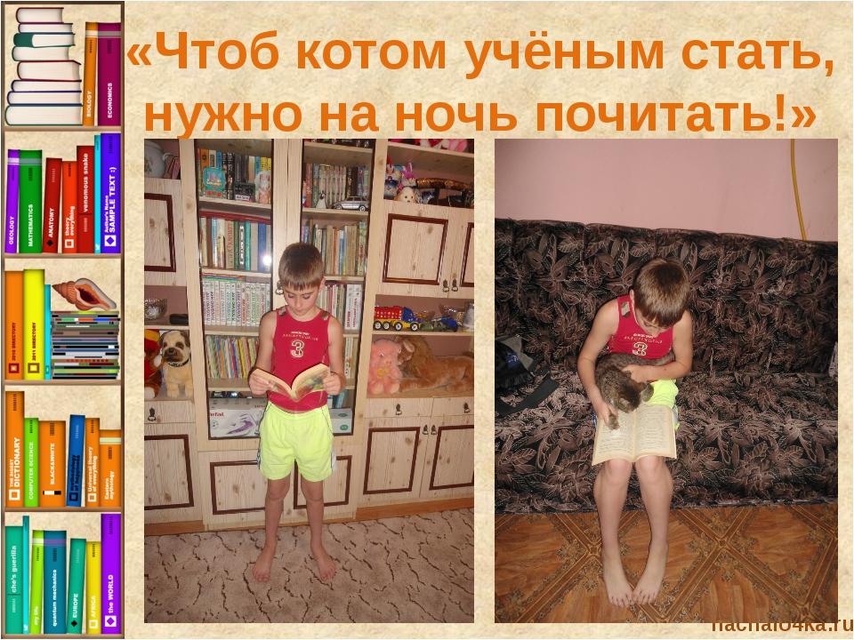 nachalo4ka.ru «Чтоб котом учёным стать, нужно на ночь почитать!»