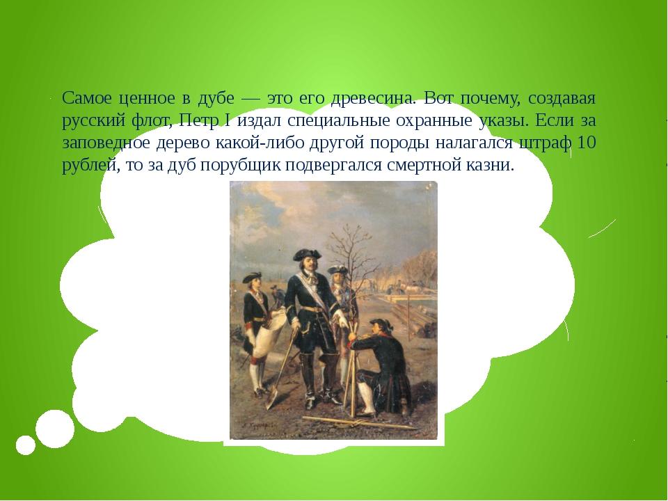 Самое ценное в дубе — это его древесина. Вот почему, создавая русский флот, П...