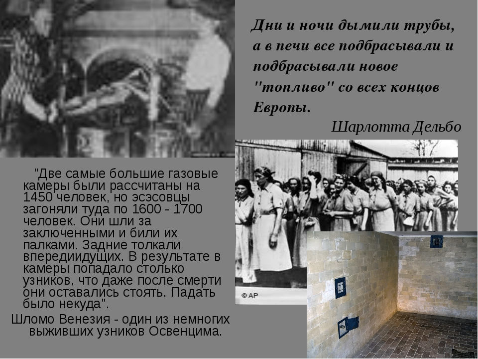 """""""Две самые большие газовые камеры были рассчитаны на 1450 человек, но эсэсов..."""
