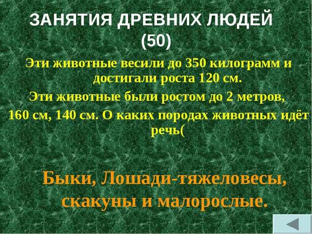 ЗАНЯТИЯ ДРЕВНИХ ЛЮДЕЙ (50) Эти животные весили до 350 килограмм и достигали р...