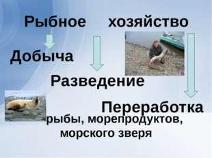 рыбы, морепродуктов, морского зверя Добыча Разведение Переработка хозяйство
