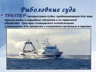 Рыболовные суда ТРАУЛЕР-промысловое судно, предназначенное для лова тралом ры