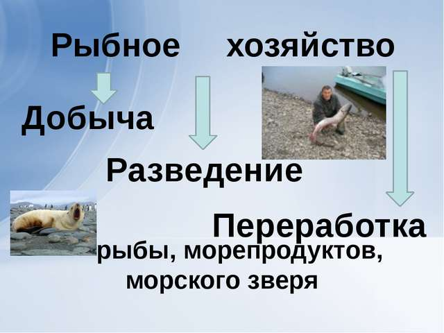 рыбы, морепродуктов, морского зверя Добыча Разведение Переработка хозяйство...