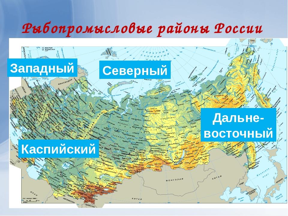 Рыбопромысловые районы России Северный Западный Дальне- восточный Каспийский