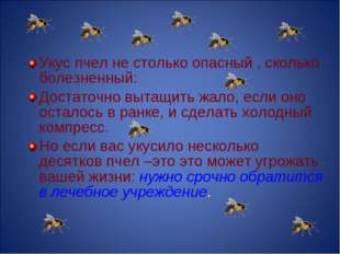 Укус пчел не столько опасный , сколько болезненный: Достаточно вытащить жало,