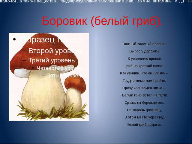 Боровик (белый гриб). Важный толстый боровик Вырос у дорожки. К уважению при...