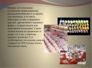 Коконы, изготовляемые гусеницами-прядильщицами, весьма разнообразны и по фор