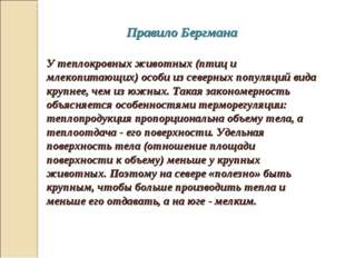 Правило Бергмана У теплокровных животных (птиц и млекопитающих) особи из сев