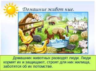 Домашние живот ные. Домашних животных разводят люди. Люди кормят их и защ