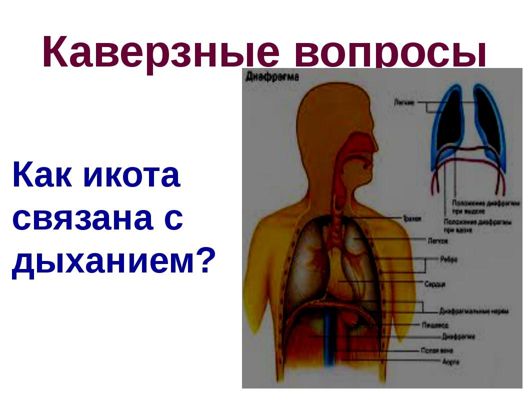 Каверзные вопросы Как икота связана с дыханием?
