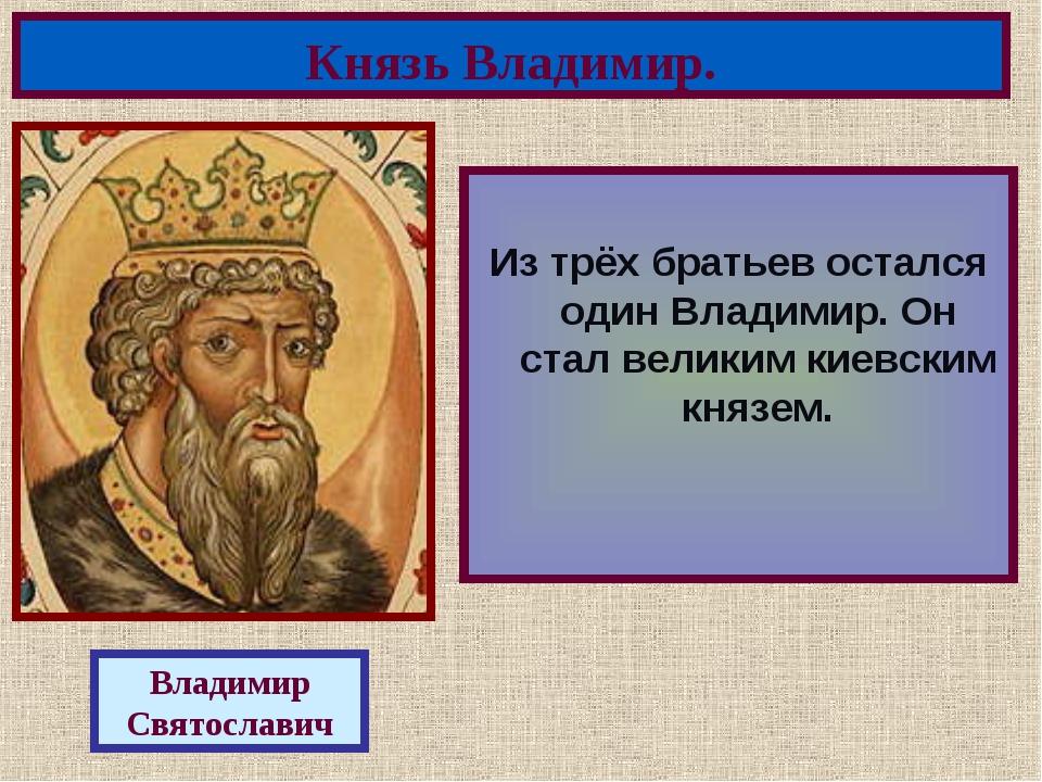 Из трёх братьев остался один Владимир. Он стал великим киевским князем. Княз...