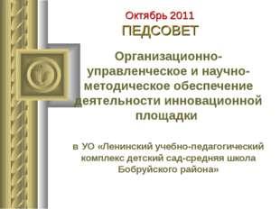 Организационно-управленческое и научно-методическое обеспечение деятельности