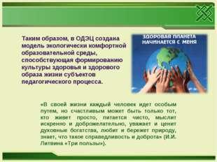 Таким образом, в ОДЭЦ создана модель экологически комфортной образовательной