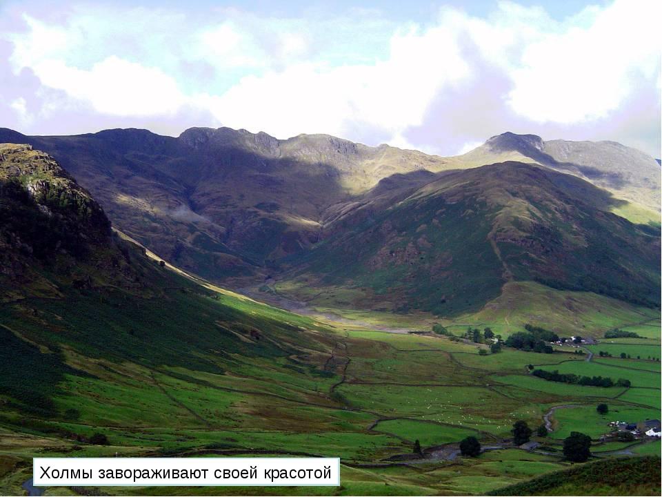 Холмы завораживают своей красотой
