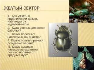 1. Как узнать о приближении дождя, наблюдая за муравейником. 2. Куда осенью
