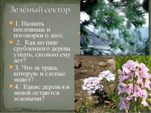 1. Назвать пословицы и поговорки о лесе. 2. Как по пню срубленного дерева уз