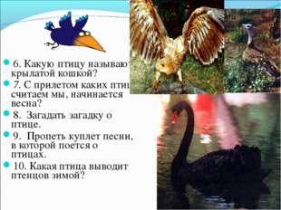 6. Какую птицу называют крылатой кошкой? 7. С прилетом каких птиц, считаем мы