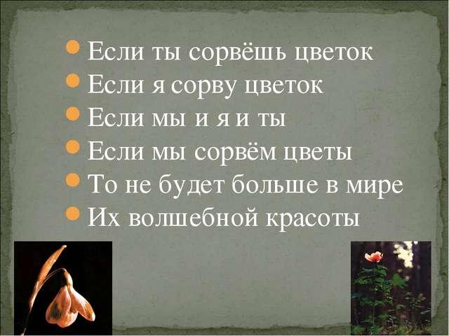 Если ты сорвёшь цветок Если я сорву цветок Если мы и я и ты Если мы сорвём ц...