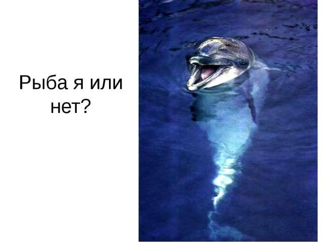 Рыба я или нет?