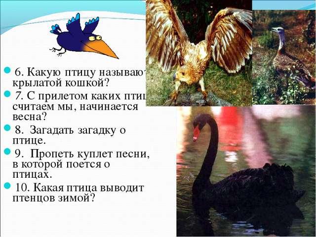 6. Какую птицу называют крылатой кошкой? 7. С прилетом каких птиц, считаем мы...
