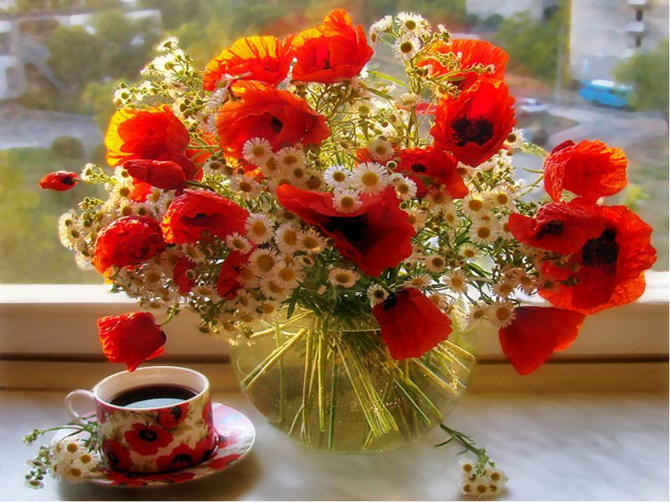 цветы букеты фото добрый день или игнорирование чревато