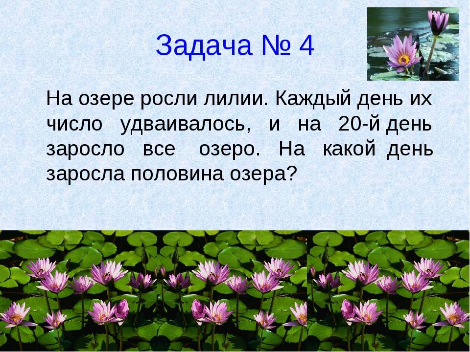 Задача № 4 На озере росли лилии. Каждый день их число удваивалось, и на 20-й...
