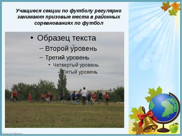 Учащиеся секции по футболу регулярно занимают призовые места в районных сорев...