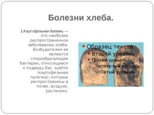 Болезни хлеба. 1.Картофельная болезнь — это наиболее распространенное заболев