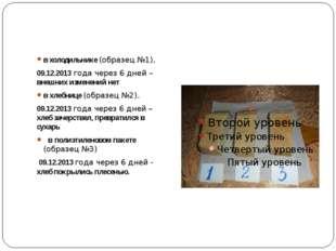 в холодильнике (образец №1), 09.12.2013 года через 6 дней – внешних изменени