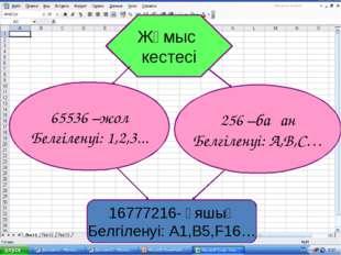 65536 –жол Белгіленуі: 1,2,3... 256 –баған Белгіленуі: A,B,C… Жұмыс кестесі 1