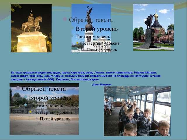 Из окон трамвая я видел площади, парки Харькова, речку Лопань, много памятник...
