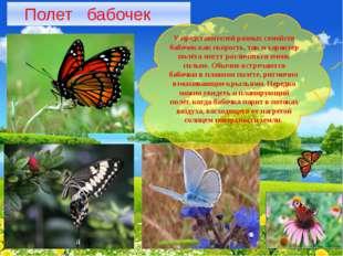 Полет бабочек У представителей разных семейств бабочек как скорость, так и х