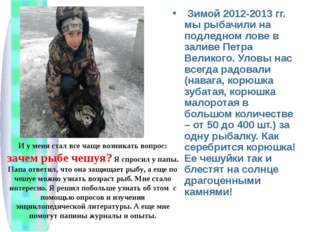 Зимой 2012-2013 гг. мы рыбачили на подледном лове в заливе Петра Великого. У