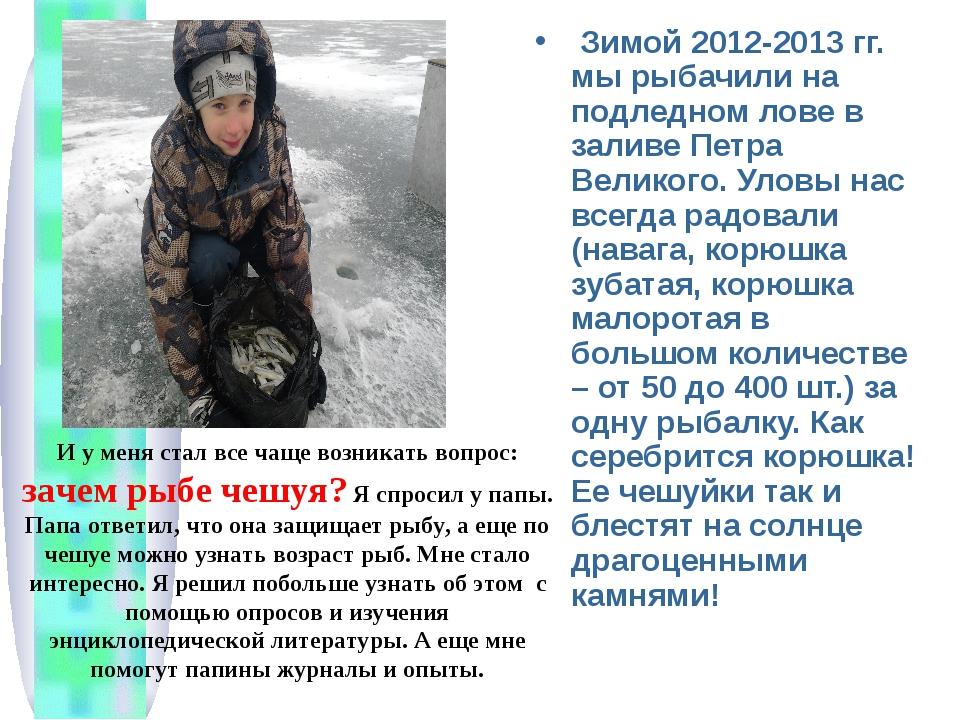Зимой 2012-2013 гг. мы рыбачили на подледном лове в заливе Петра Великого. У...