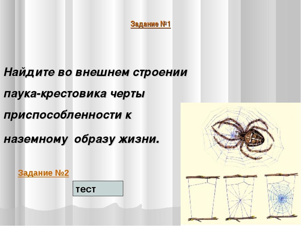 Задание №1 Найдите во внешнем строении паука-крестовика черты приспособленнос...