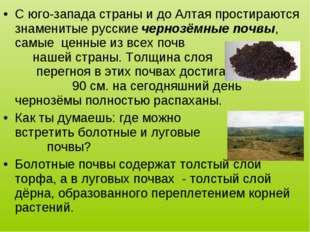 С юго-запада страны и до Алтая простираются знаменитые русские чернозёмные по