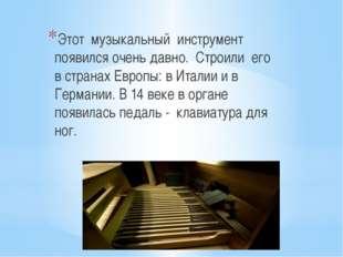 Этот музыкальный инструмент появился очень давно. Строили его в странах Евро