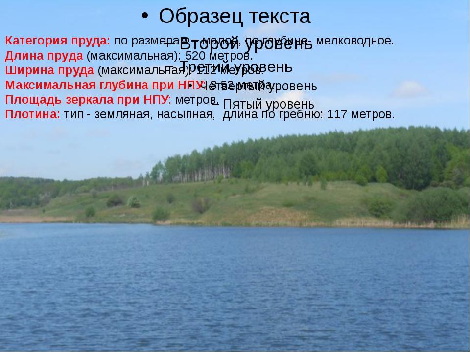 Категория пруда: по размерам – малое, по глубине- мелководное. Длина пруда (...