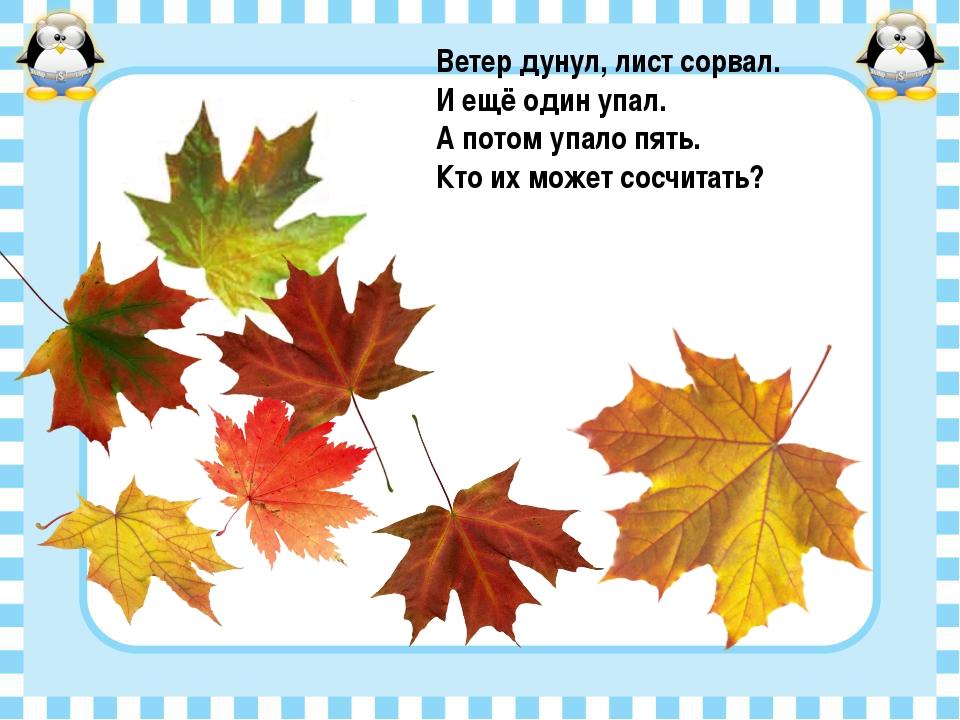 Ветер дунул, лист сорвал. И ещё один упал. А потом упало пять. Кто их может с...
