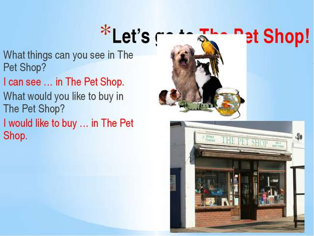 Let's go to The Pet Shop! What things can you see in The Pet Shop? I can see...