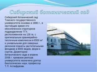 Сибирский ботанический сад Томского государственного университета основан в 1